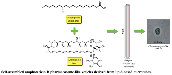 Self-Assembled Amphotericin B Pharmacosome-Like Vesicles Derived from Lipid-Based Microtubes: A Model Carrier to Further Explore