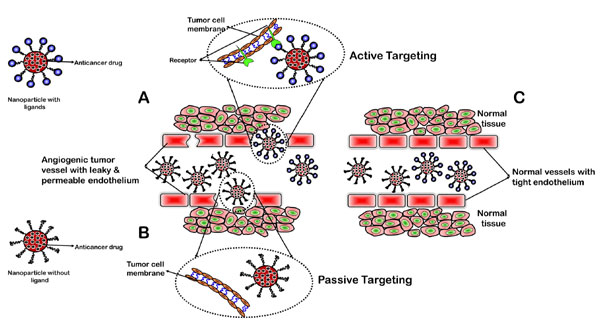 Nano-Chitosan Particles in Anticancer Drug Delivery: An Up