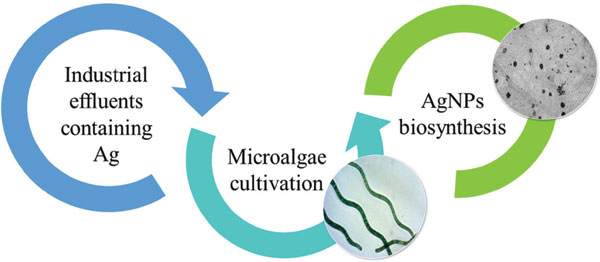 Microalgae Cultivation and Industrial Waste: New Biotechnologies for