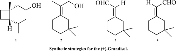 Synthetic Strategies for the (+)-Grandisol, the Main Constituent of Boll Weevil Pheromone