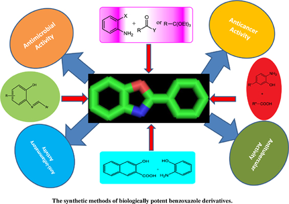 Review on the Synthetic Methods of Biologically Potent Benzoxazole Derivatives
