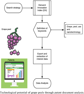 Evaluation of the Technological Potential of Grape Peels Through Patent Document Analysis: Agro-industrial Waste with Biotechnological Potential