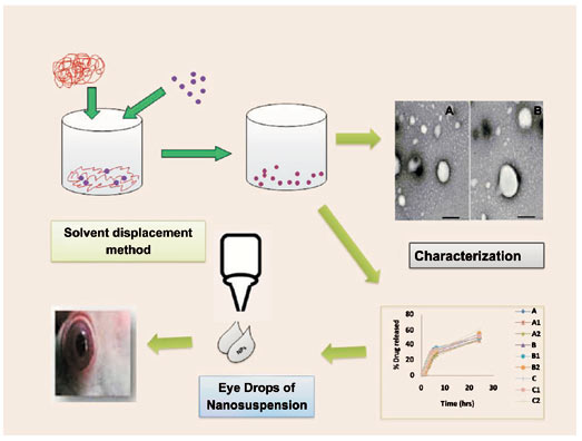 Comparative Study of Eudragit RS 100 and RL 100 Nanoparticles as