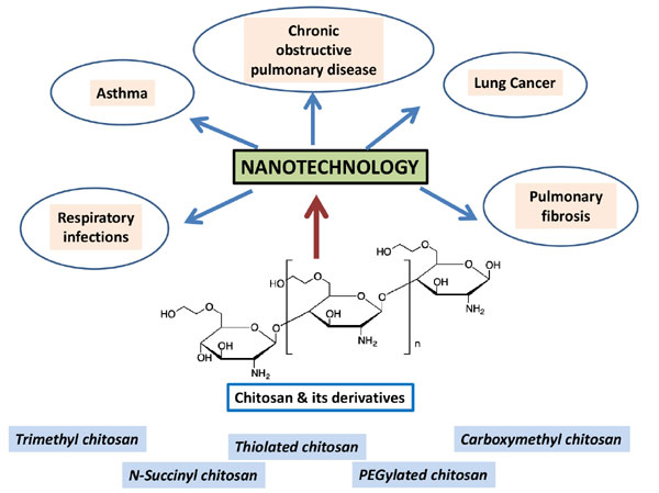 Application of Chitosan and its Derivatives in Nanocarrier