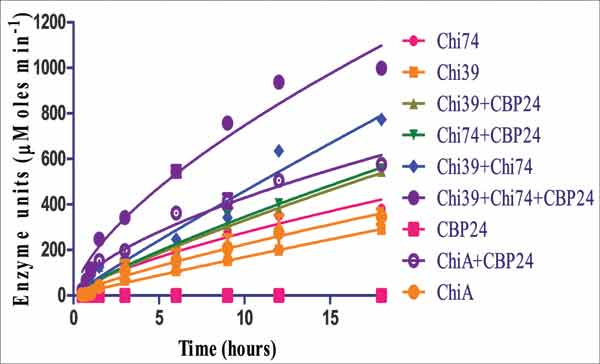 Heterologous Expression of the Antifungal β-chitin Binding Protein CBP24 from Bacillus ...
