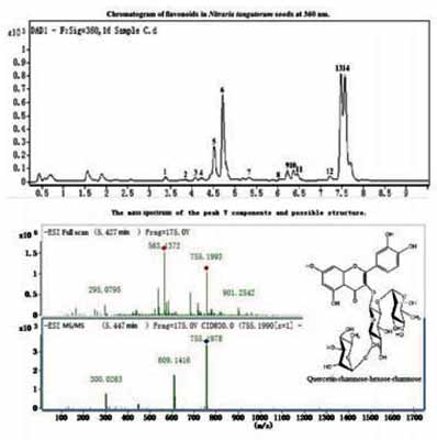 Determination of Flavonoids and Anthocyanins in Nitraria ...