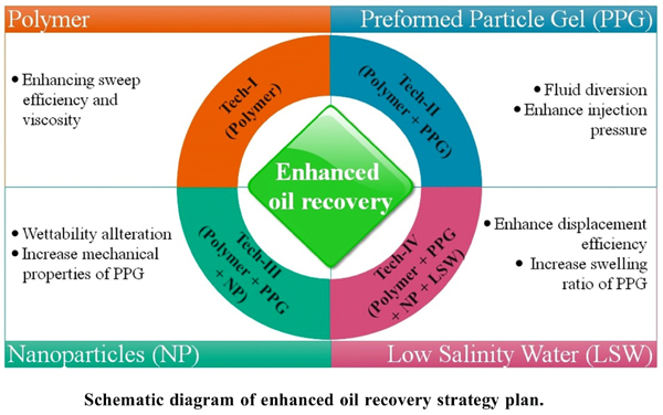 A Comprehensive Study on Factors Affecting Preformed Particle Gel in Enhanced Oil Recovery