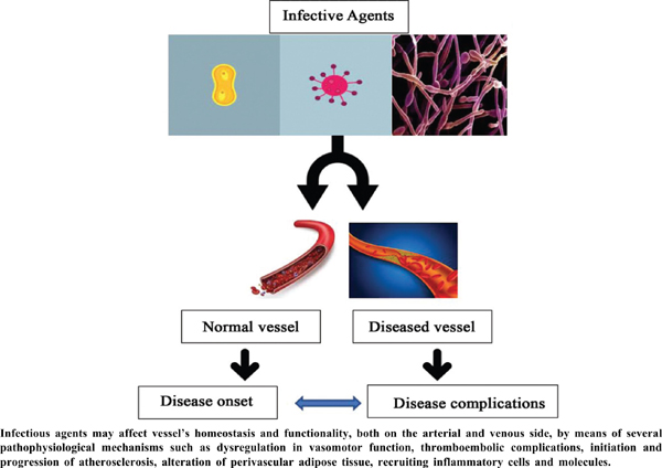 Infection, Infectious Agents and Vascular Disease
