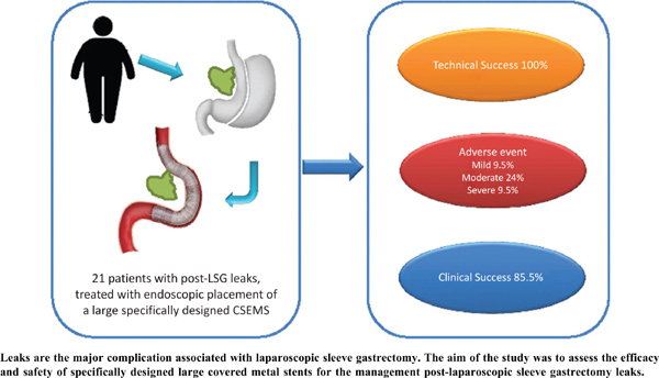 Management of Leaks Following Laparoscopic Sleeve Gastrectomy Using Specifically Designed Large Covered Metal Stents